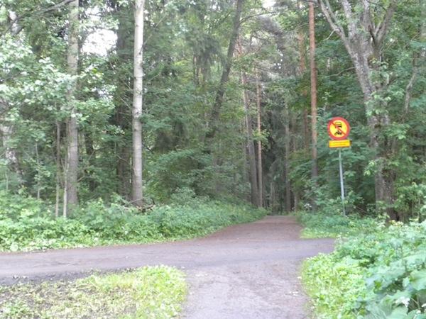 Ns. metsäpyörätietä muistuttava metsäajorata.