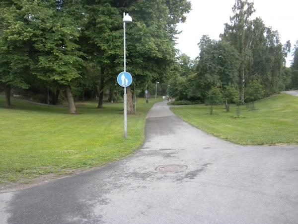 Metsäjalkakäytävä.